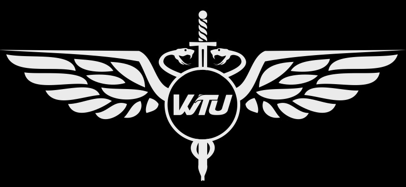 Neuer WTU Wing Tsun Universe Blog