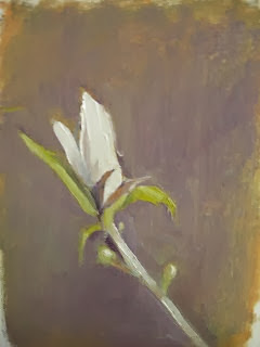 https://www.etsy.com/listing/168350148/magnolia-budspring-in-idaho-blossom?ref=sr_gallery_41&ga_search_query=magnolia+tree&ga_view_type=gallery&ga_ship_to=US&ga_page=1&ga_search_type=handmade&ga_facet=handmade%2Fart%2Fpaintingmagnolia+tree