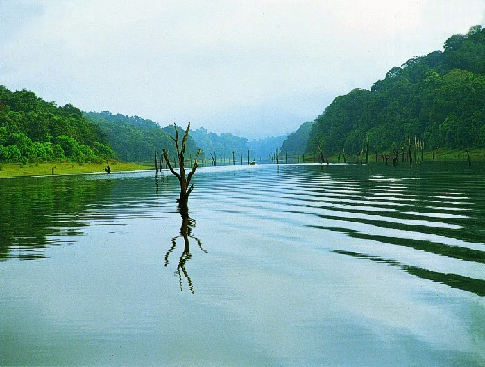Adventure Spots in Thekkady, Thekkady Activities, Places to Visit in Thekkady, Things to Do in thekkady, adventure sports in thekkady