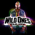 Download Free Flo Rida Wild Ones Album