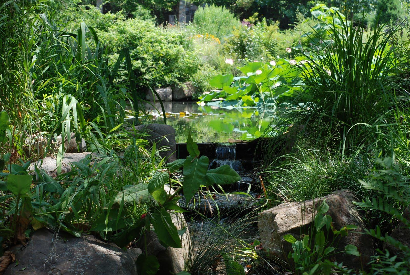 Lifestyle Garden Chanticleer
