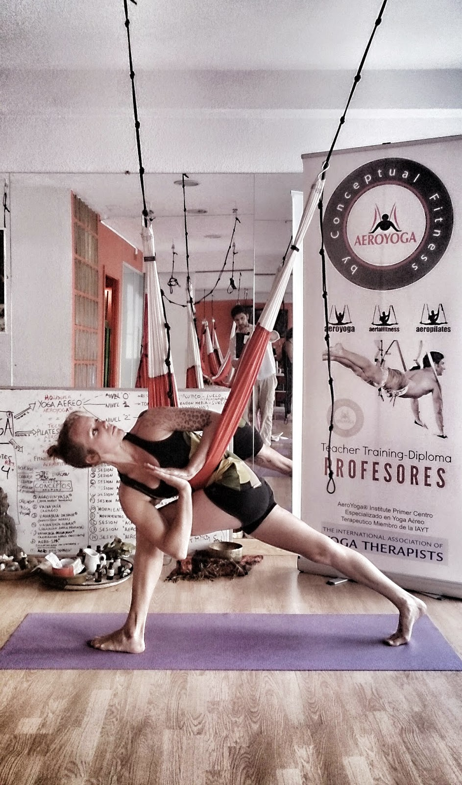 Aerial Yoga Teacher Training TRIKONASANA