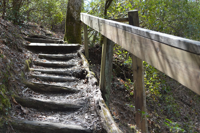 Minnehaha stairs - Tallulah Gorge - The City Dweller