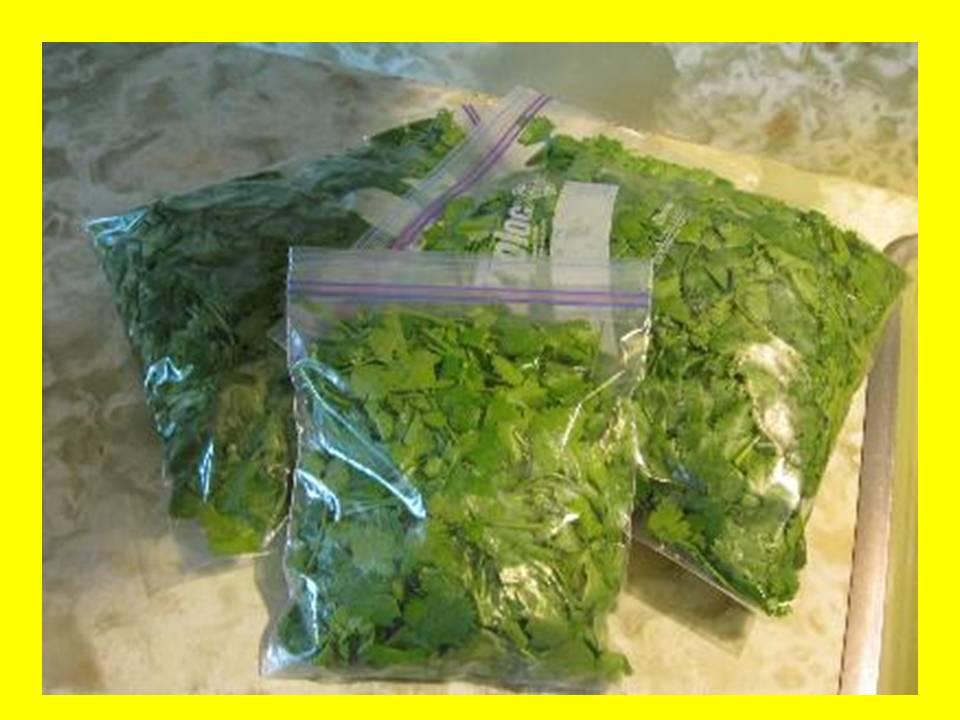 Reutilizar las bolsas de congelaci n vida sana trucos y - Bolsas congelacion ...