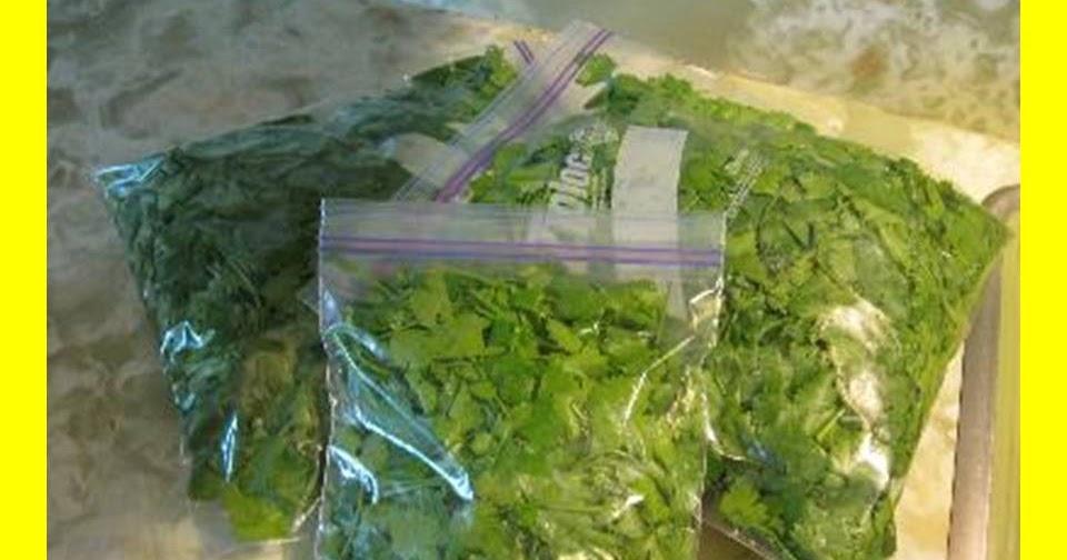 Reutilizar las bolsas de congelaci n trucos y consejos - Bolsas congelacion ...