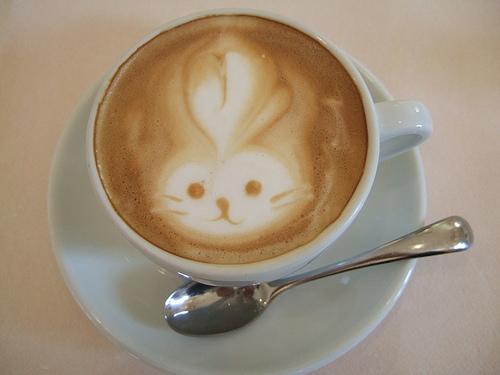 Kitten Special Coffee