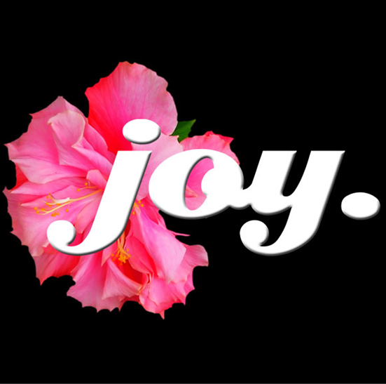 Someone mentioned to me that I should BE the Joy and Light, which I realised ...