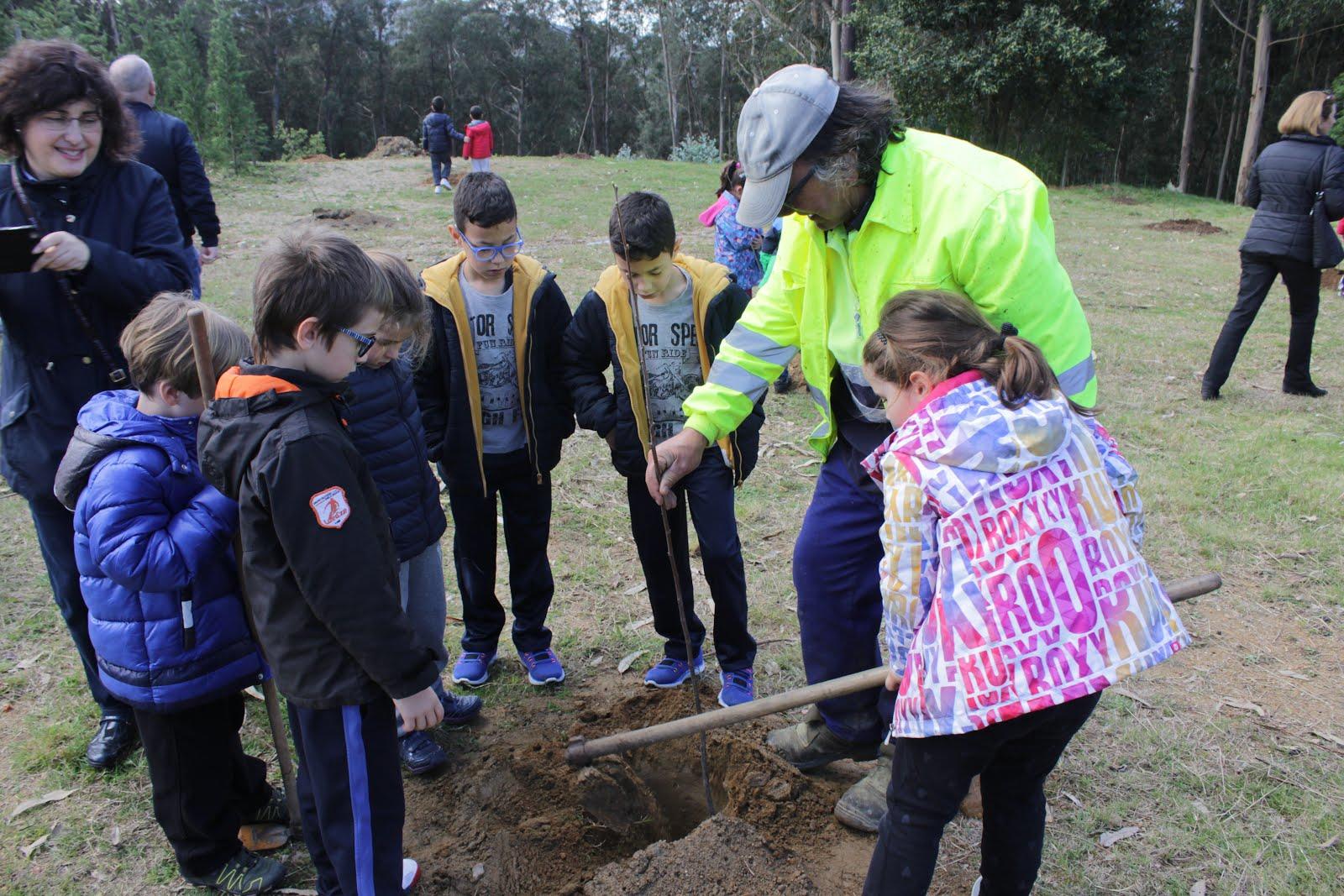 Dia da árbore en Bembrive (marzo17)