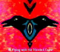 Flying With the Hooded Crow; Running With Mad Hounds