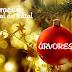 Decoração especial de Natal: Árvores