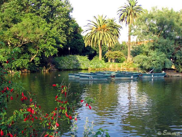 La cyca jardiner a los jardines del parque de la for Jardineria barcelona