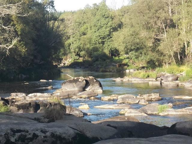 rio miño
