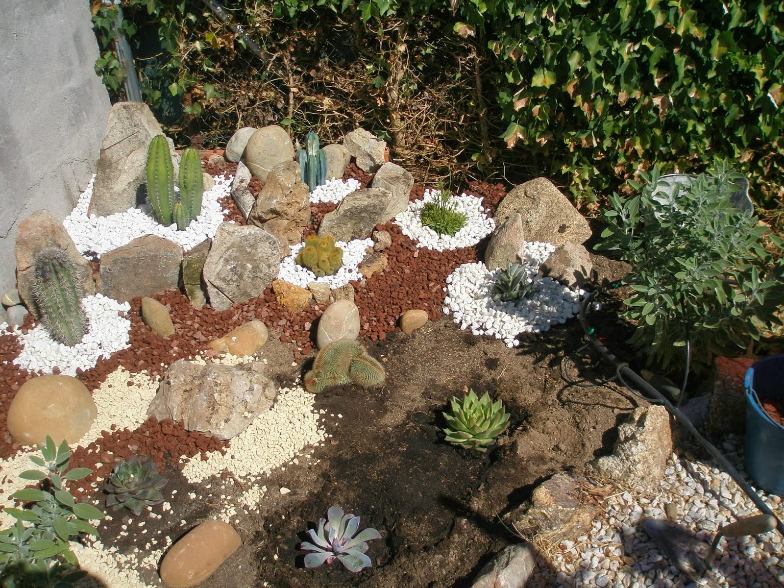 La br jula de los 8 calderos minijard n de cactus en la - Jardines con gravilla ...