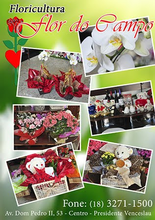 Floricultura Flor do Campo