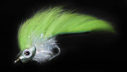 The African Fly Angler: Fish Skull Fly