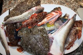 pesci da zuppa