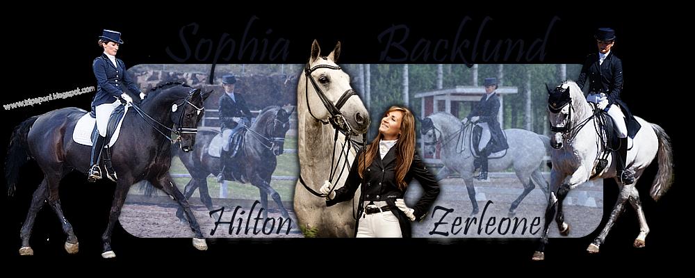 Sophia Backlund, Zerleone & Hilton