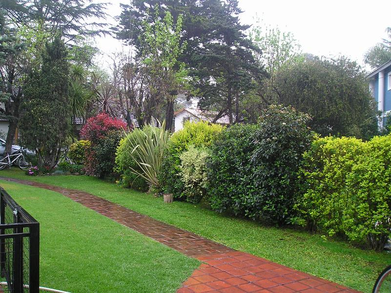 Arte y jardiner a setos campestres hermosos y tiles - Setos de jardin ...