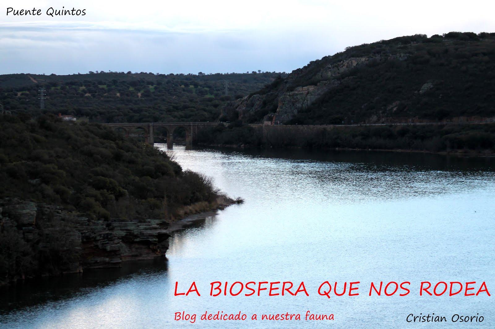 La Biosfera Que Nos Rodea