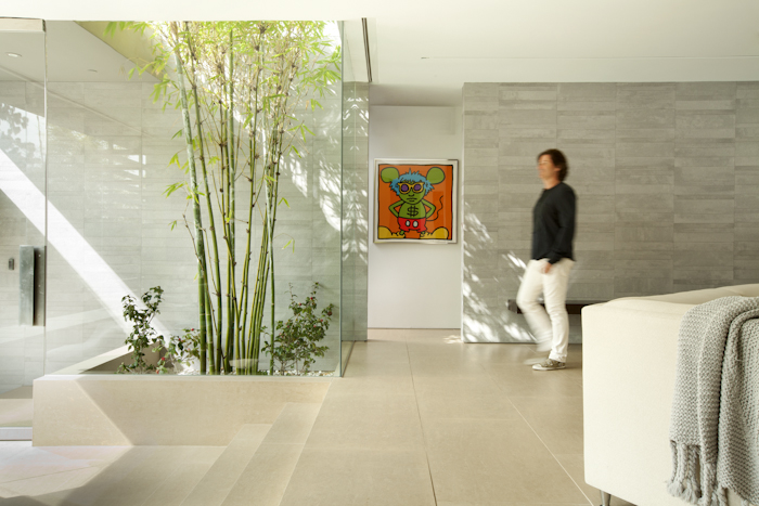 Bamboo tree in the Beautiful Modern Home by Shubin + Donaldson Architects