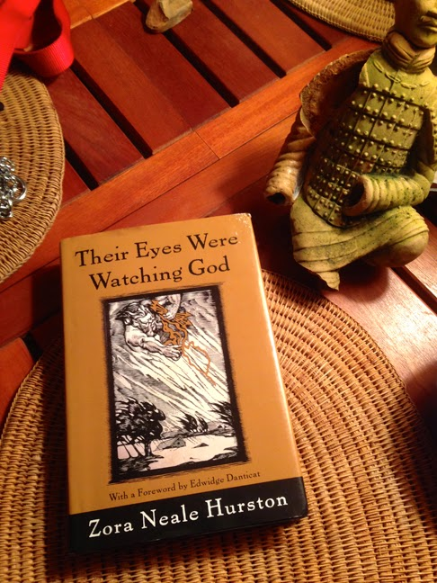 Need help do my essay similarities between hurston?s novels, seraph on the suwanee and their eyes were watching god