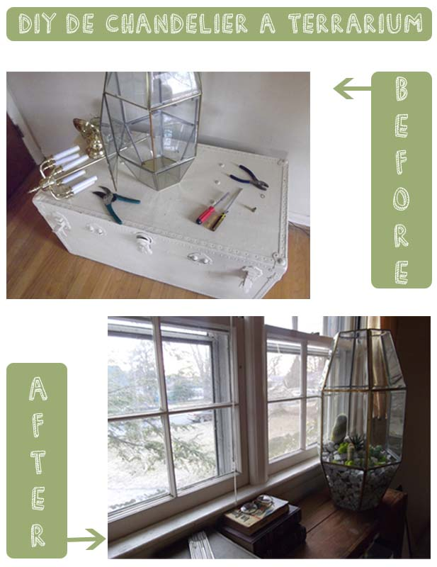 terrariums_DIY_before_after