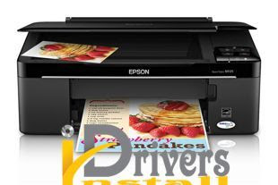 Download Epson Pro WP-4023 Driver