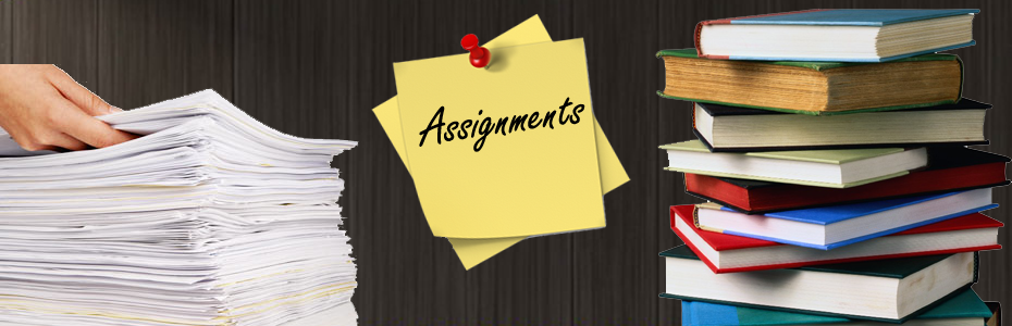 solved assignment 4 u