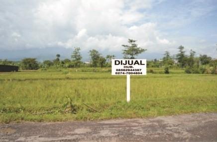 Mencari Tanah Dijual Murah