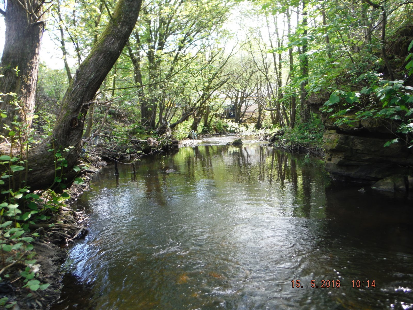 Flyfishing the River Irwell and other Streams.