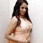 Tanisha   in Churidar Spicy Photo Gallery