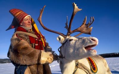 Los renos del círculo polar ártico
