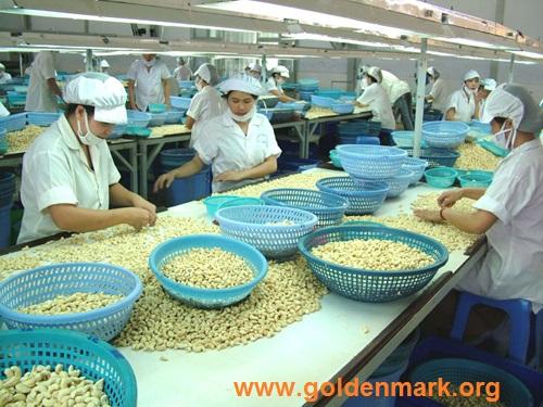 www.goldenmark.org - 10 tháng, xuất khẩu nông lâm thủy sản đạt 24,61 tỷ USD