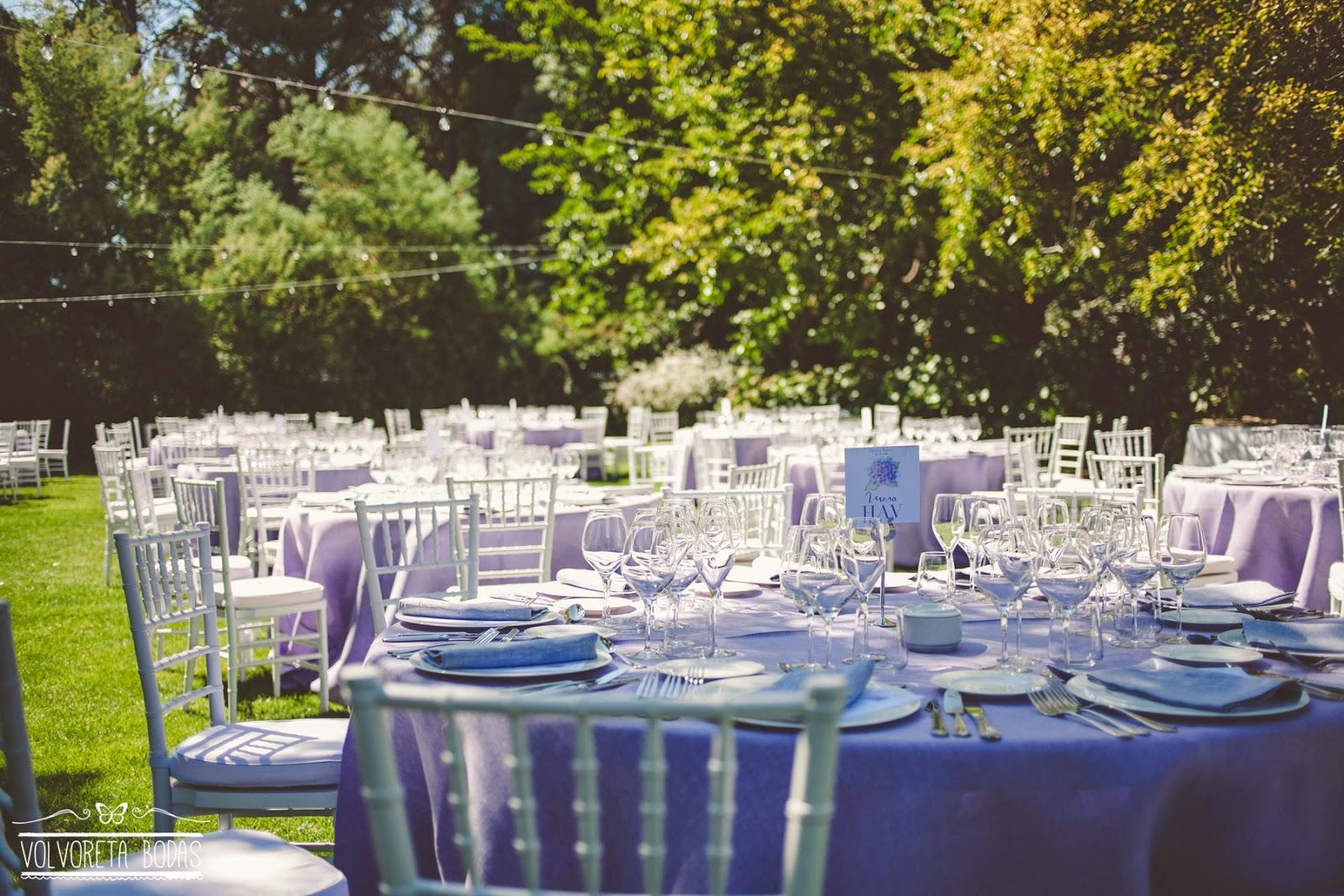 wedding planners alma blanca