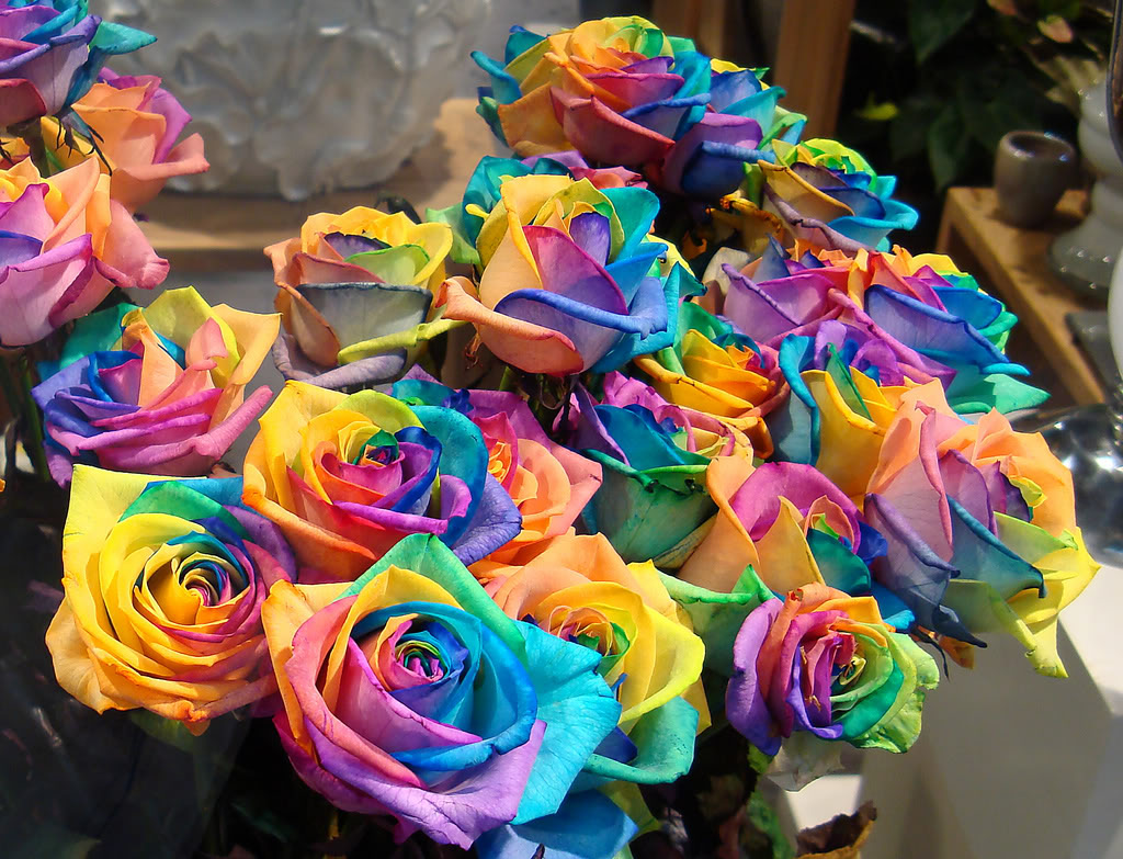 flower pa news how to make rainbow roses