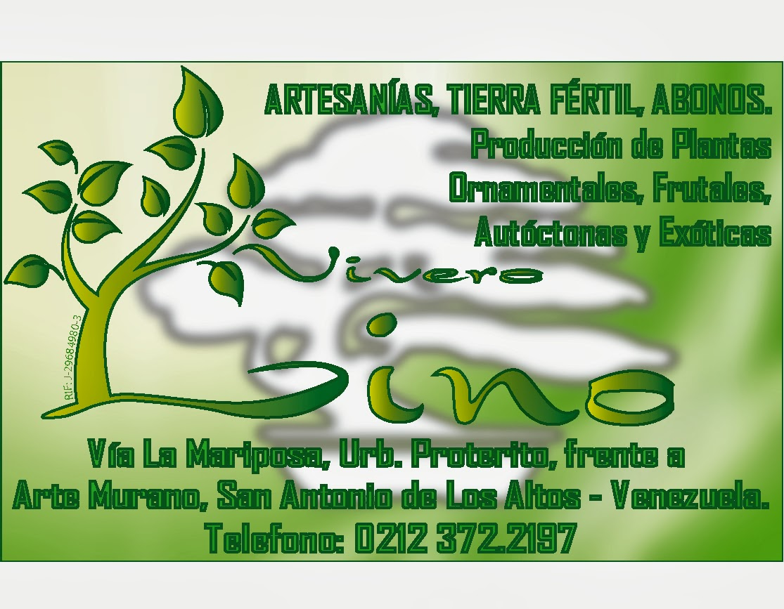 Vivero lino c a gu amarilla for Vivero de plantas exoticas