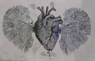Heart and lungs graffiti in Paris