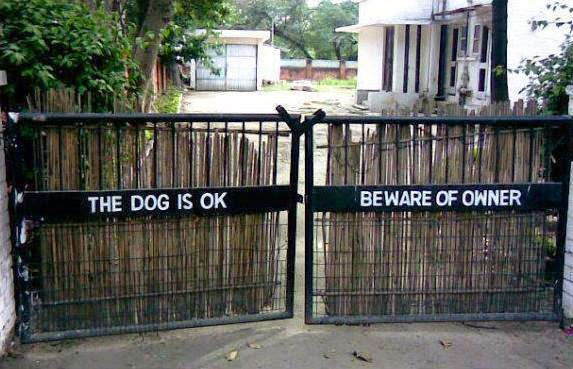 the dog is ok beware of owner