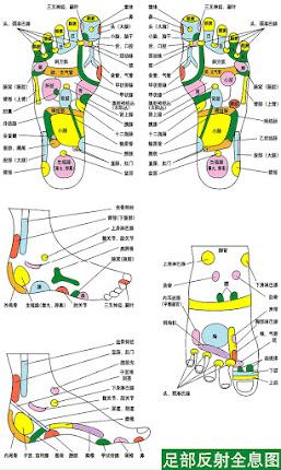 Mapa reflexológico de pies
