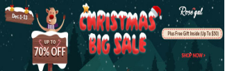 Promotion Christmas Sale in ROSEGAL