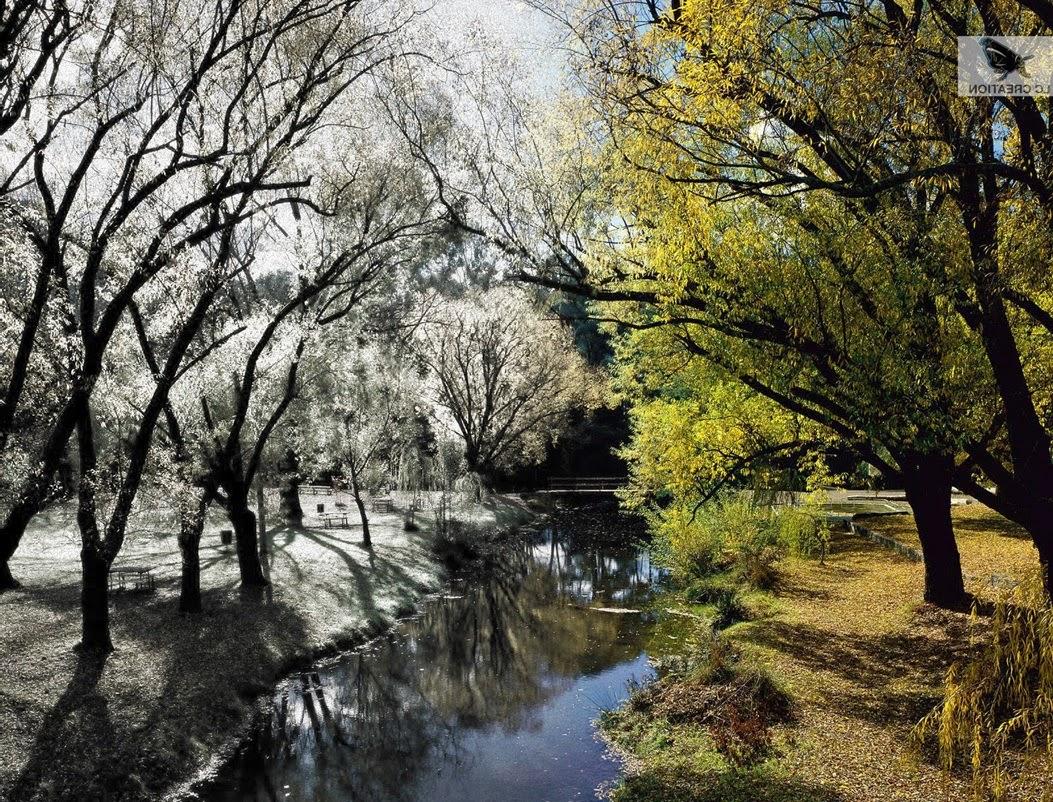 reflexion invierno, primaver, pesamiento
