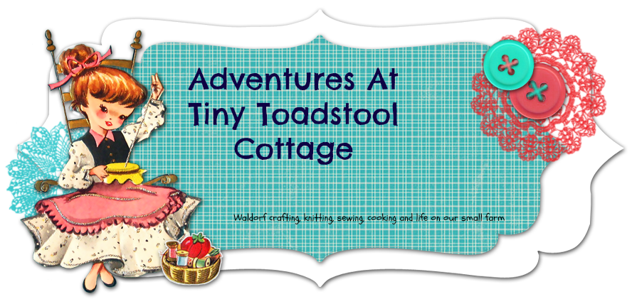 Adventures At Tiny Toadstool Cottage