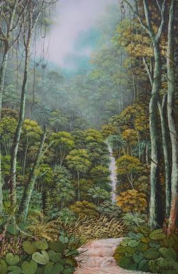paisaje amazonas colombia