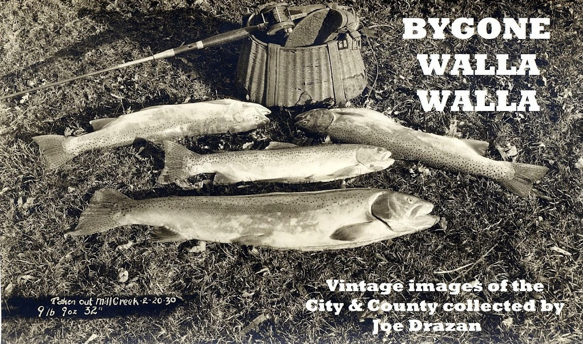 Bygone Walla Walla: vintage images of the City and County, collected by Joe Drazan