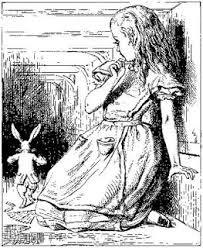 Alice and rabbit