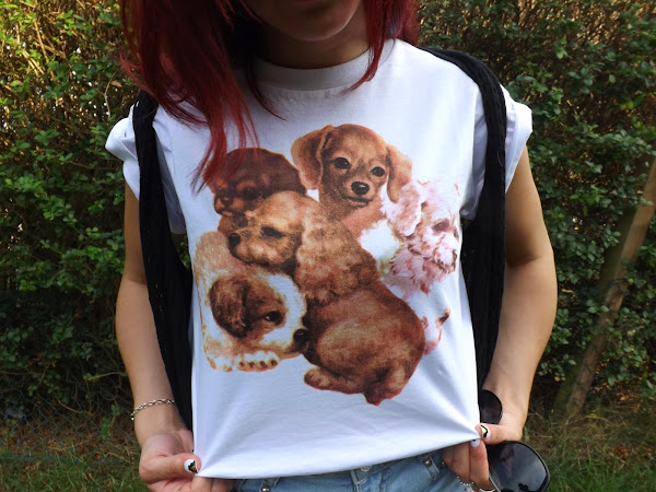 What Cat Wore: Puppies!