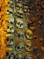 Misteri Black Death di Eropa