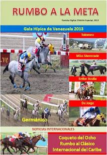 Gala Hípica de Venezuela 2013. Resultados