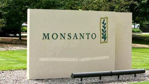 Monsanto anuncia altos beneficios y una mayor expansión en América Latina