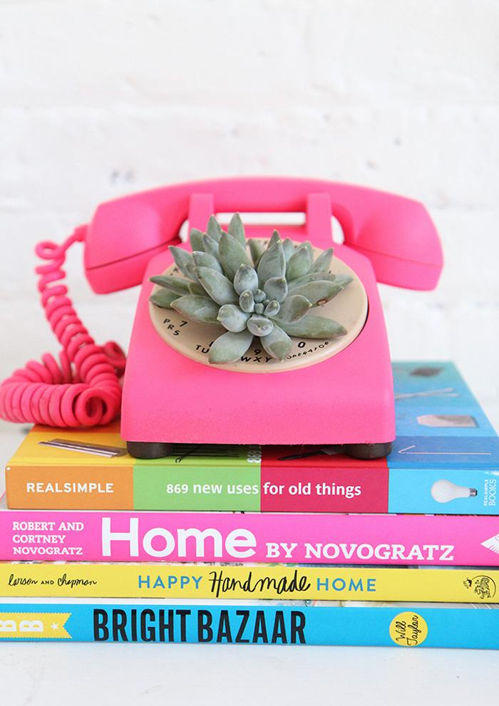 http://1.bp.blogspot.com/-itvjOCmZwhU/VWgWQ0kfeUI/AAAAAAABWMw/jmwCUGPn6XQ/s1600/ispydiy_succulentphone42.jpg